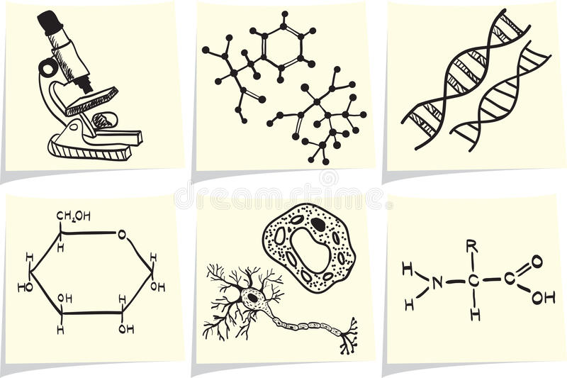Os ícones da biologia e da química no memorando amarelo furam ilustração do vetor