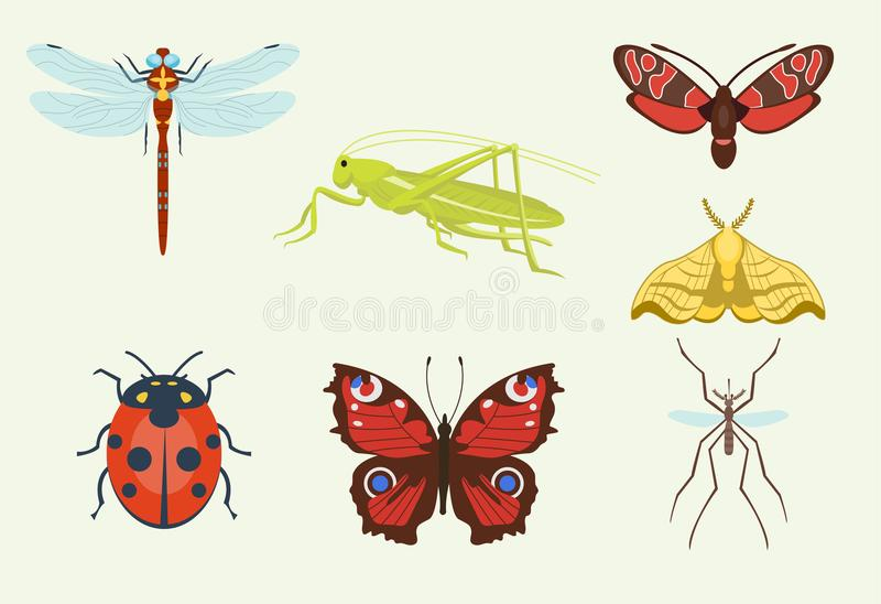 Os ícones dos insetos do vetor isolados na ilustração colorida da opinião superior do fundo da asa dos animais selvagens voam o m ilustração do vetor