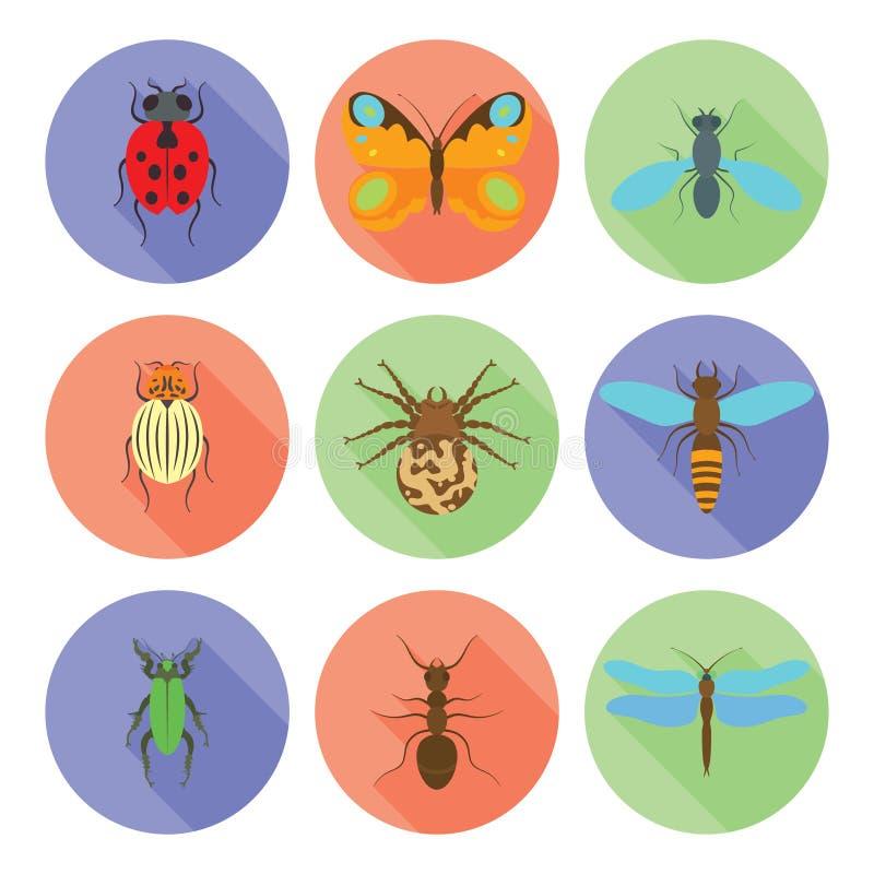 Os ícones dos insetos vector o estilo liso no fundo branco ilustração stock