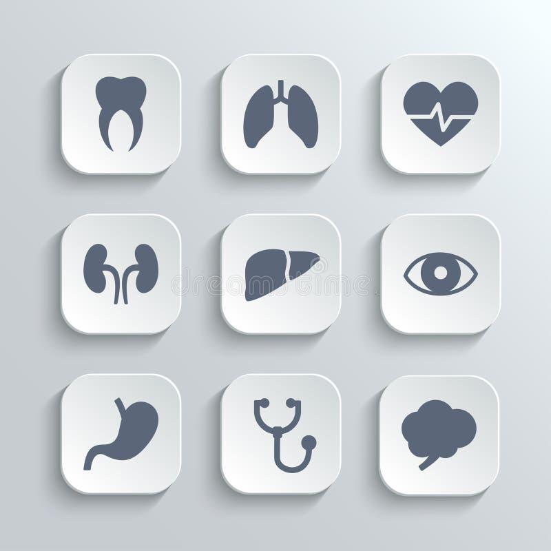 Os ícones médicos ajustam-se - vector os botões brancos do app ilustração stock