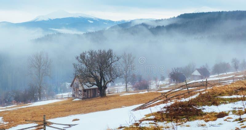 Os últimos dias do inverno nas montanhas de Ucrânia, névoa grossa carpathians imagem de stock