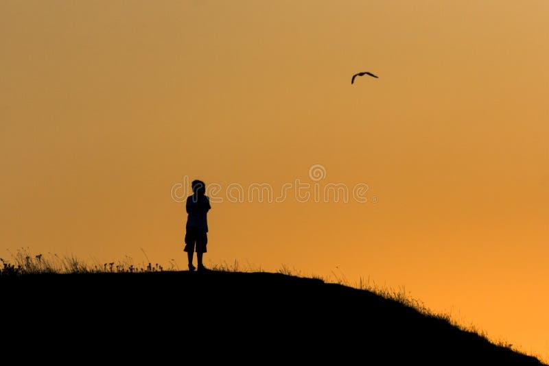 Os últimos momentos do por do sol fotografia de stock