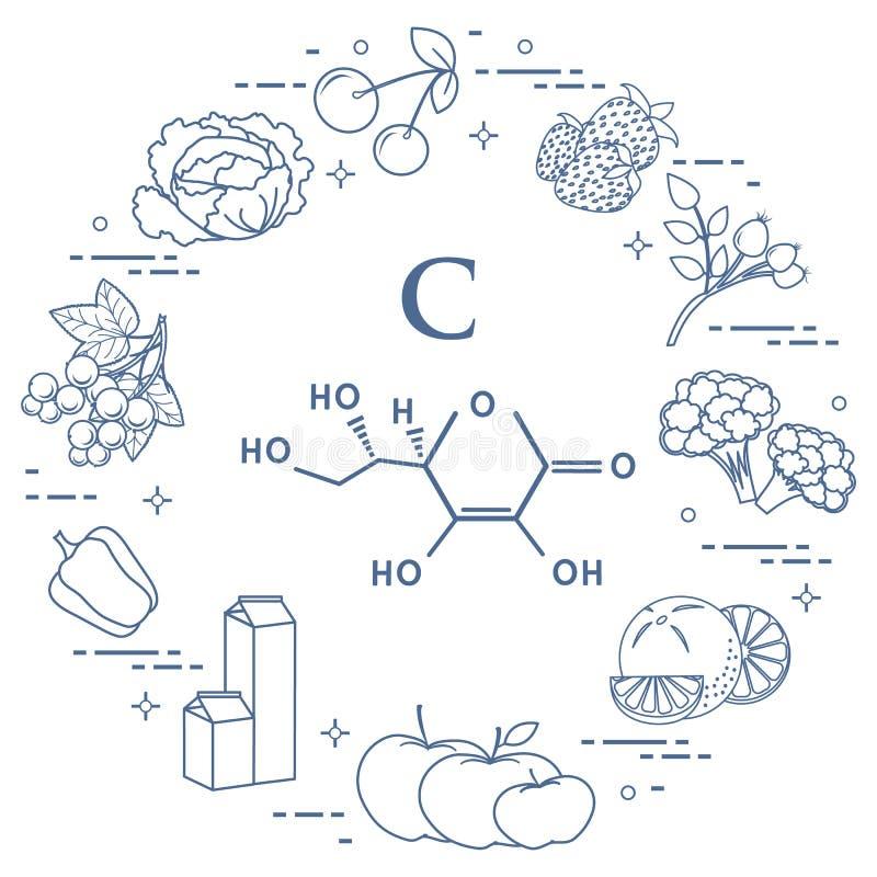 Os alimentos ricos na vitamina C ilustração royalty free