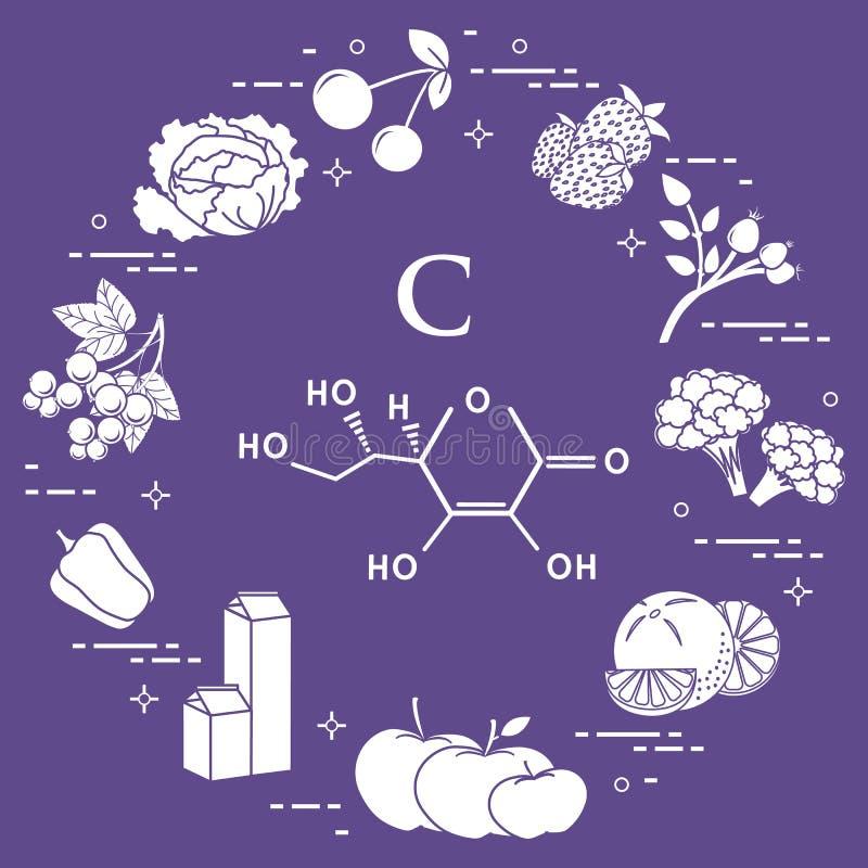 Os alimentos ricos na vitamina C ilustração stock