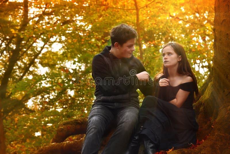 Os amigos apreciam um humor romântico na floresta do outono