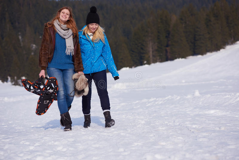 Os amigos fêmeas no dia de inverno bonito têm a caminhada relaxado na neve imagem de stock