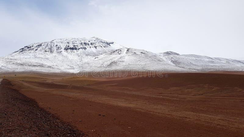Os Andes entre o Chile e Bolívia fotos de stock