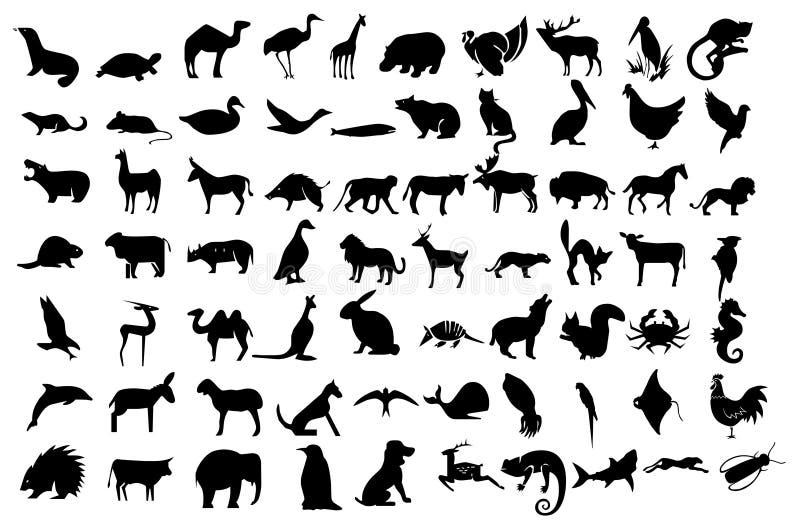 Os animais ajustaram ícones da coleção ilustração royalty free