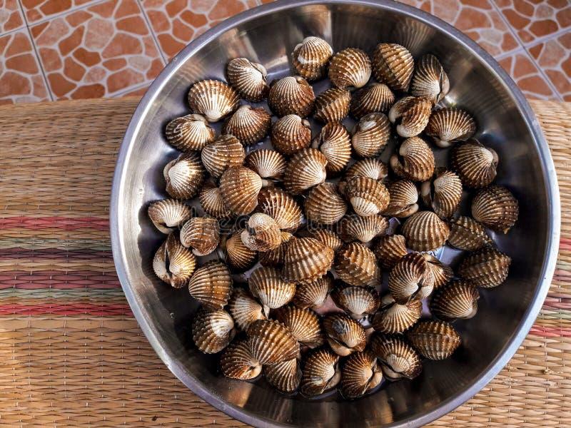 Os animais do berbigão enlatam feito no alimento foto de stock royalty free