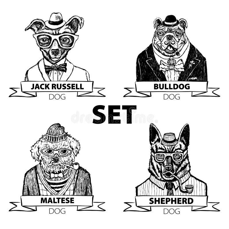 Os animais do moderno ajustaram o cão, com vetor dos vidros e dos laços ilustração royalty free