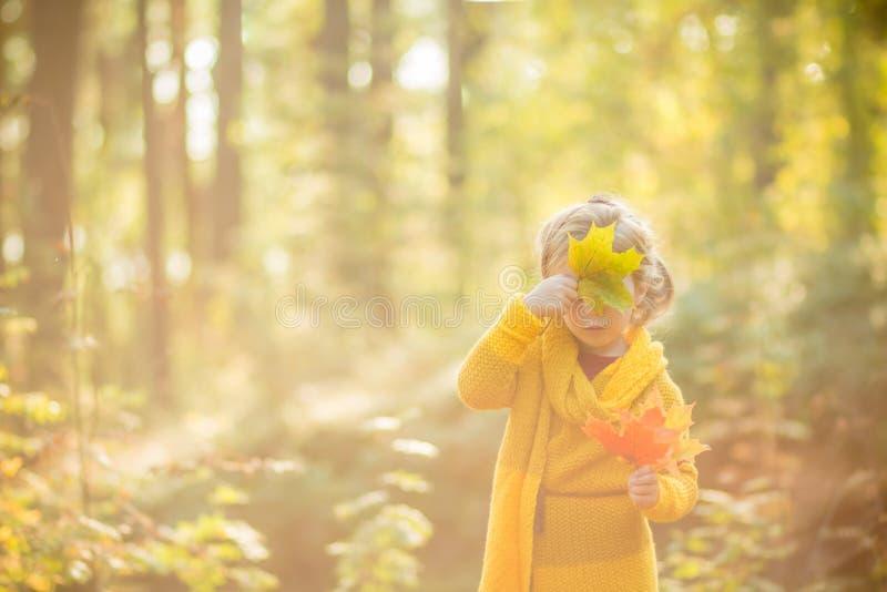 Os 5 anos bonitos da menina loura idosa escondem sua cara atrás de uma folha de bordo em um fundo do forestAutumn ensolarado do o fotografia de stock royalty free