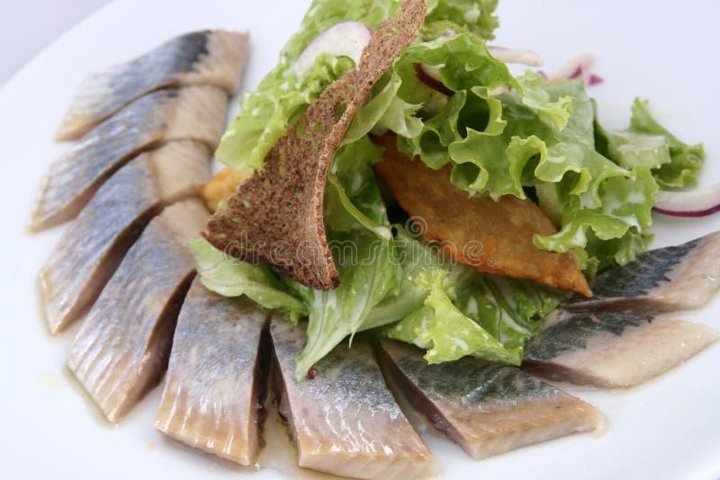 Os arenques pescam com fatias das batatas, verdes, a cebola vermelha e o pão de centeio foto de stock