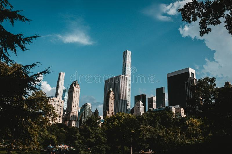 Os arranha-céus de New York dispararam do parque imagem de stock