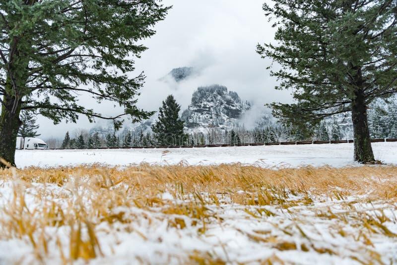 Os arredores naturais aproximam a através-passagem no Estados Unidos fotografia de stock royalty free