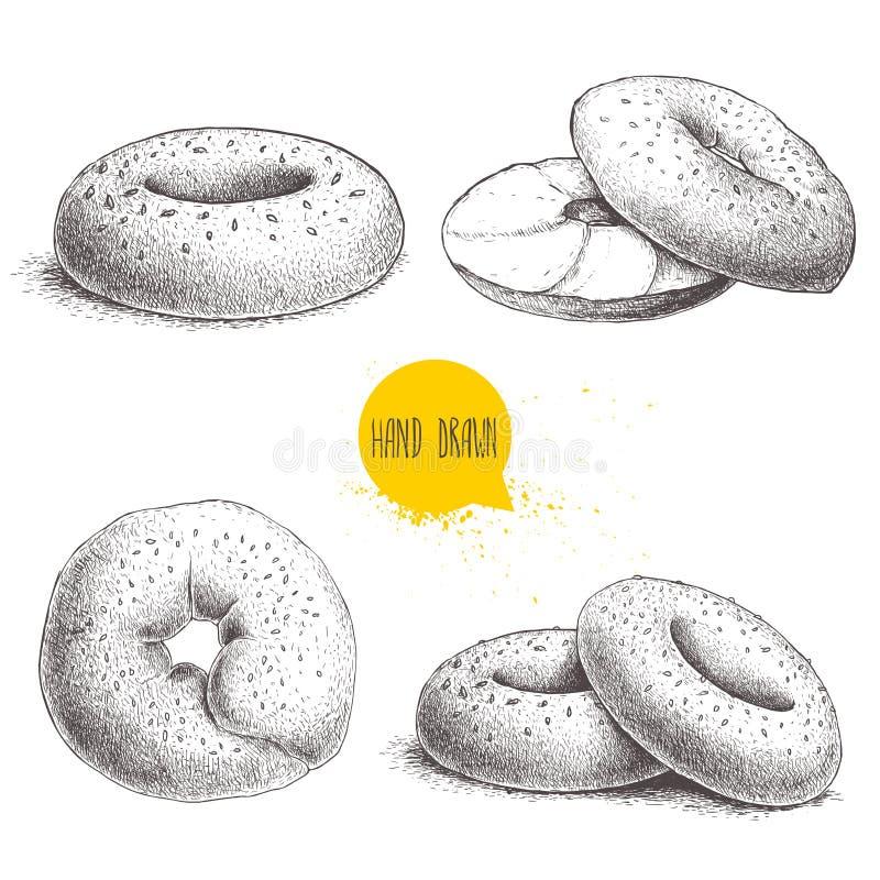Os bagels tirados mão do sésamo do estilo do esboço ajustaram-se no fundo branco Bagel, bagel cortado com queijo creme ilustração do vetor