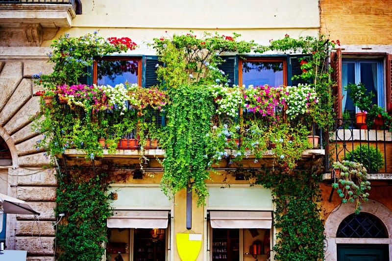 Os balcões completamente de flores decoram casas e ruas em Roma, Itália imagem de stock royalty free
