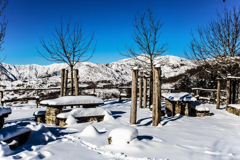 Os bancos de parque cercam e as árvores cobertas por nevadas fortes imagens de stock