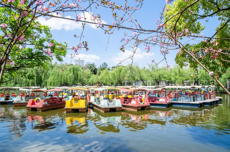 Os barcos de Pedalo que estacionam no lago verde estacionam, ele igualmente conhecido porque Cui Hu Park é um dos parques os mais imagem de stock royalty free
