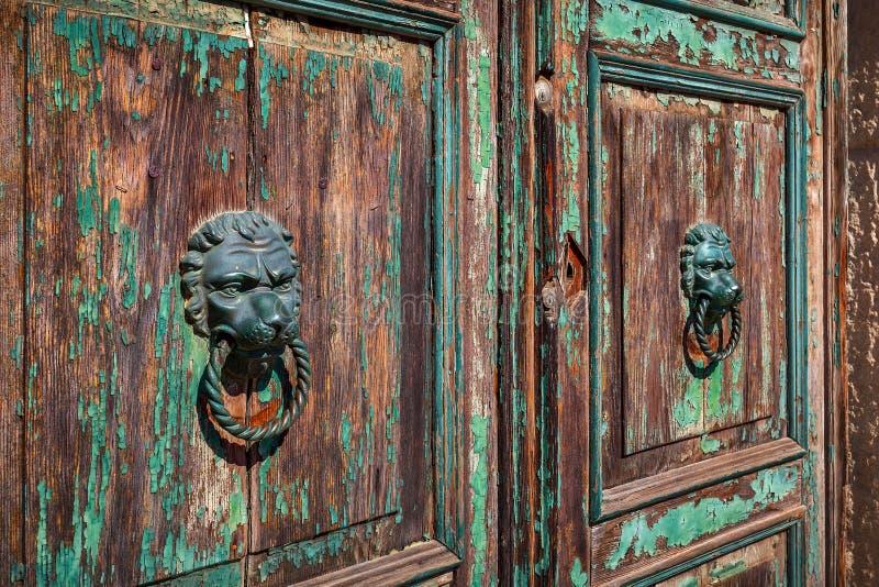Os botões de porta na forma do ` s do leão dirigem na porta de madeira velha imagem de stock royalty free