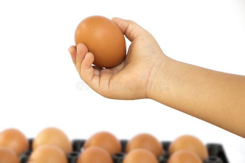 Os braços do menino, captura eggs fotos de stock royalty free