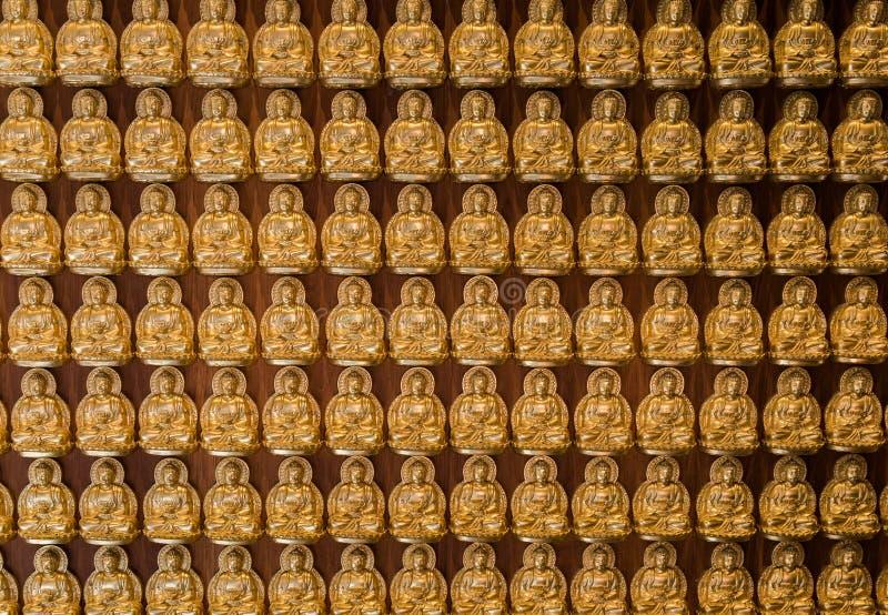 Os buddhas dourados alinharam ao longo da parede do templo chinês foto de stock royalty free