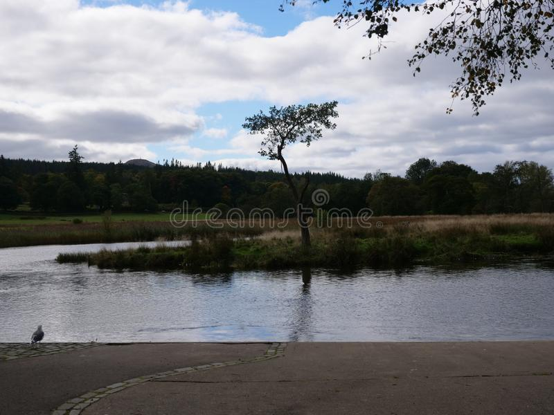 Os céus azuis do Loch escocês ajardinam imagem de stock royalty free