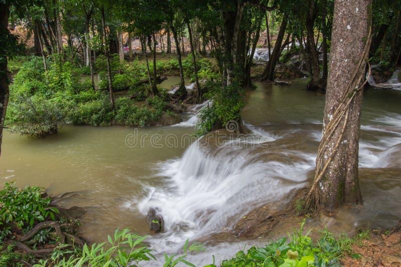 Os córregos da água que derramam para baixo na pedra calcária balançam sob máscaras das árvores na cachoeira de Kroeng Krawia, pa fotos de stock