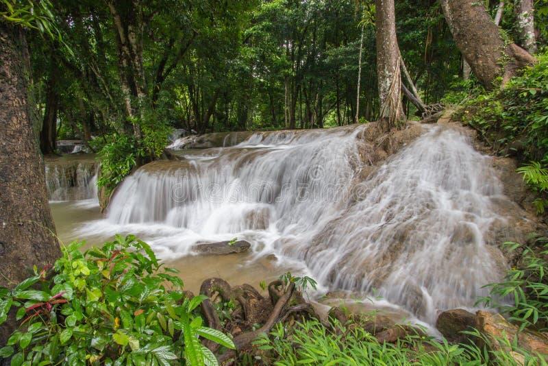 Os córregos da água que derramam para baixo na pedra calcária balançam sob máscaras das árvores na cachoeira de Kroeng Krawia, pa fotografia de stock