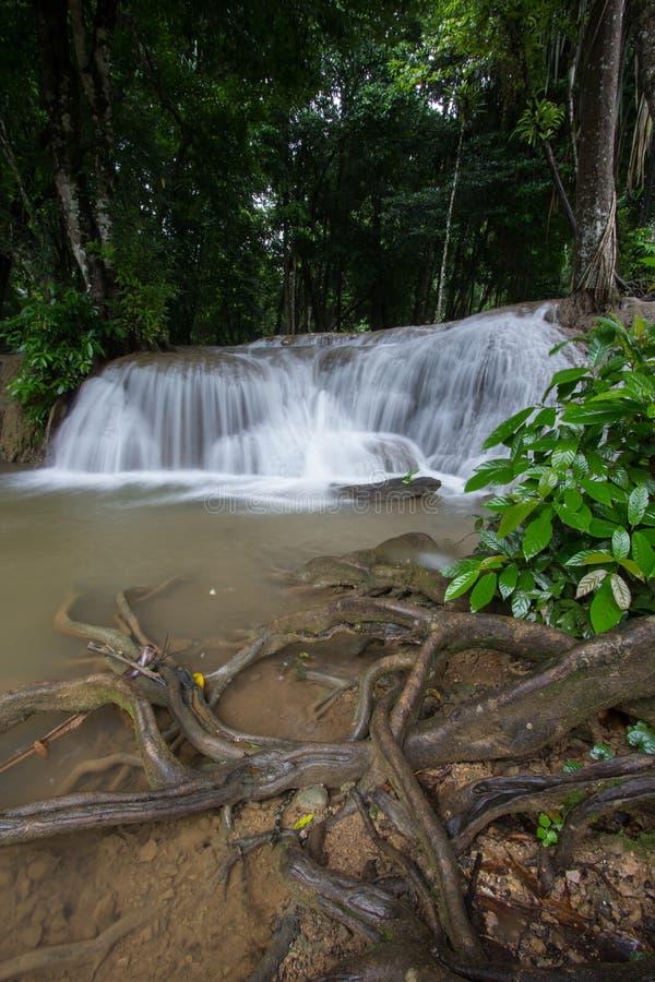 Os córregos da água que derramam para baixo na pedra calcária balançam sob máscaras das árvores na cachoeira de Kroeng Krawia, pa fotografia de stock royalty free