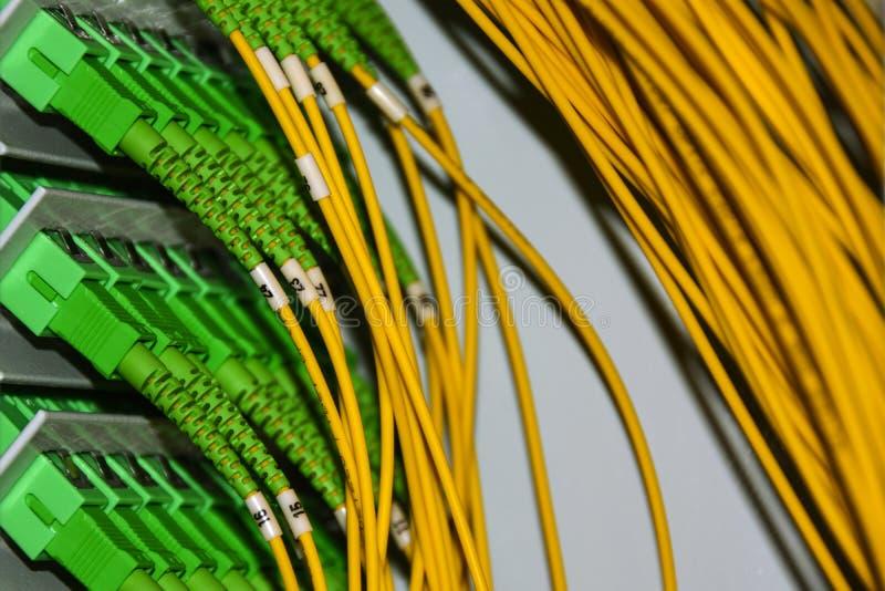 Os cabos de fibra ótica no painel de remendo no armário das telecomunicações transmitem dados no protocolo do IP fotos de stock