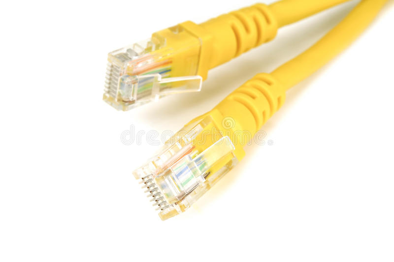 Os cabos ethernet fotografia de stock royalty free