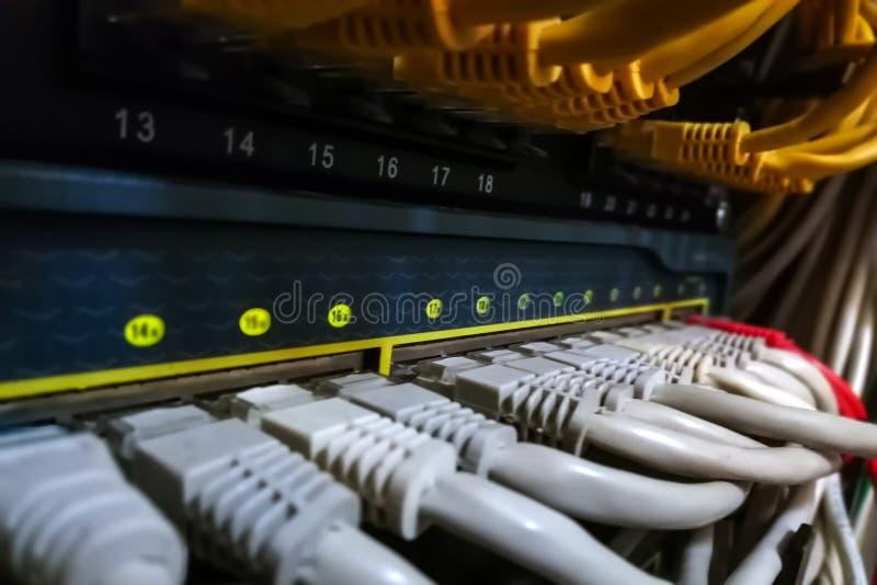 Os cabos ethernet da rede conectam para comutar e painel de remendo fotografia de stock royalty free