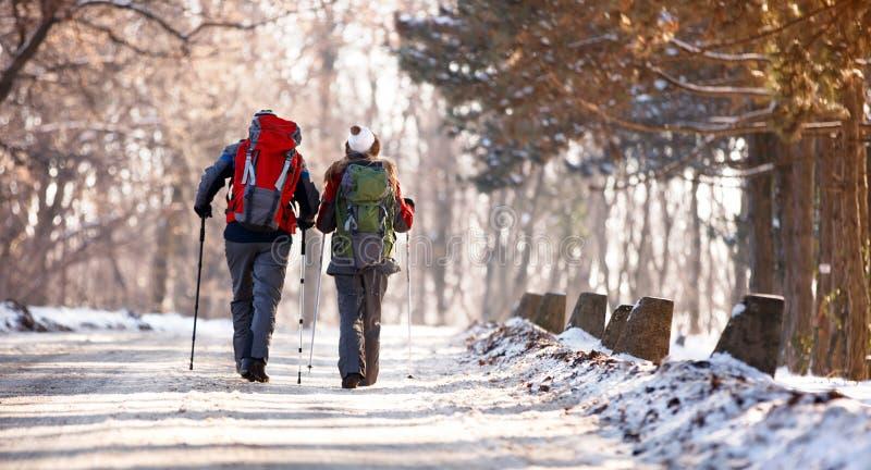 Os caminhantes acoplam-se com trouxas, vista traseira foto de stock royalty free