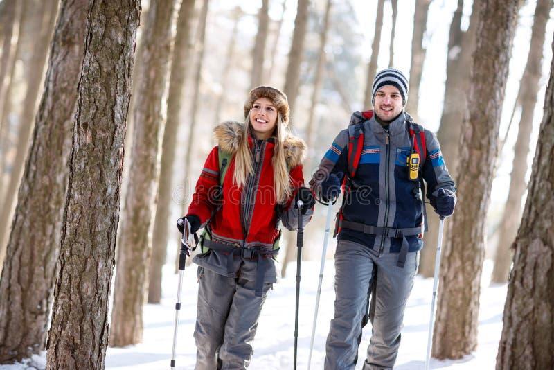 Os caminhantes acoplam-se no inverno que caminha na floresta fotos de stock