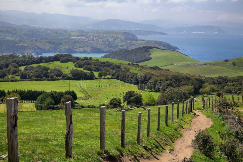 Os campos verdes em Biscaia costeiam perto de Gorliz, país Basque, Espanha imagens de stock
