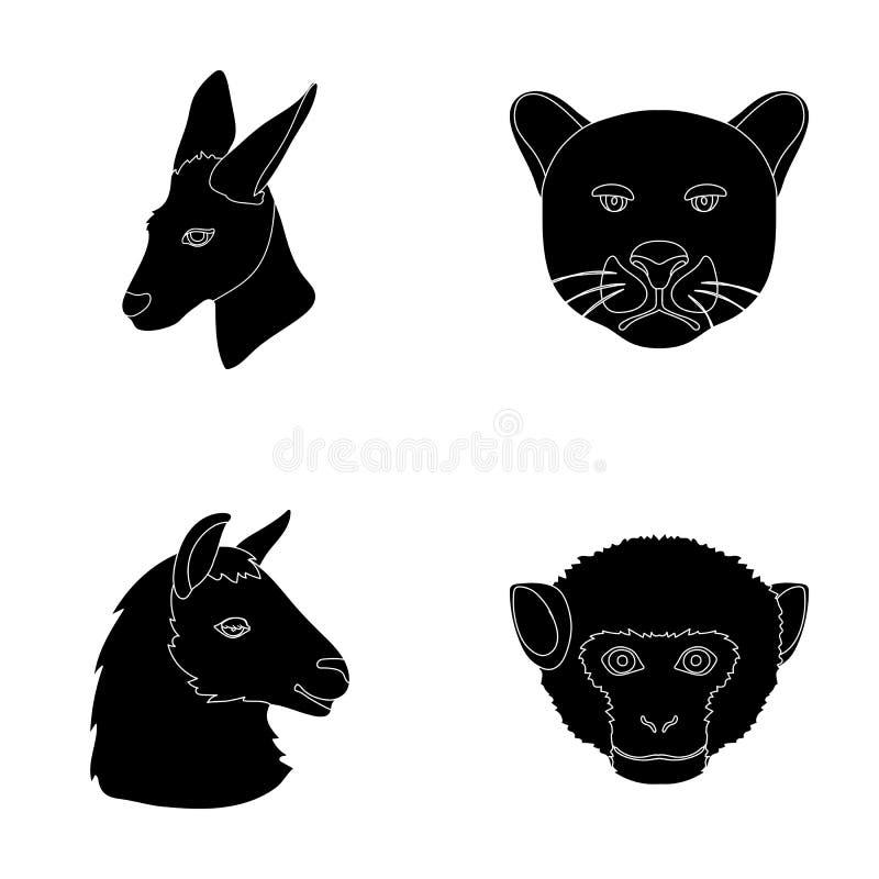 Os cangurus, lama, macaco, pantera, animais realísticos ajustaram ícones da coleção no estoque preto do símbolo do vetor do estil ilustração royalty free