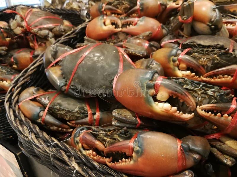 Os caranguejos frescos estão no supermercado imagens de stock