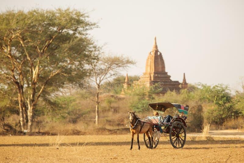 Os carros de boi transportam povos e turistas locais em torno do tem imagens de stock royalty free
