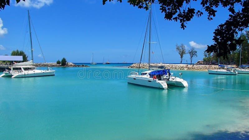 Os catamarãs e os veleiros em um laggon de turquesa gostam do porto no foto de stock royalty free