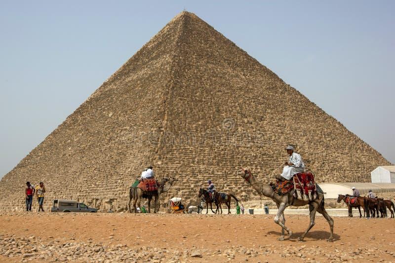 Os cavaleiros egípcios do camelo e do cavalo circundam a base da pirâmide de Khufu no Cairo em Egito fotografia de stock