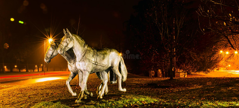 Os cavalos favoritos dos royals na noite em Windsor, Reino Unido foto de stock royalty free