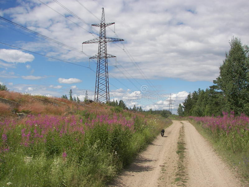 Os centrais elétricas aproximam a estrada fotografia de stock