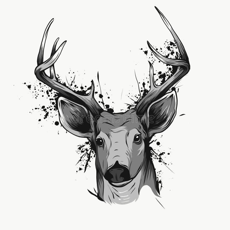 Os cervos dirigem no branco, ilustração tirada mão do vintage ilustração stock