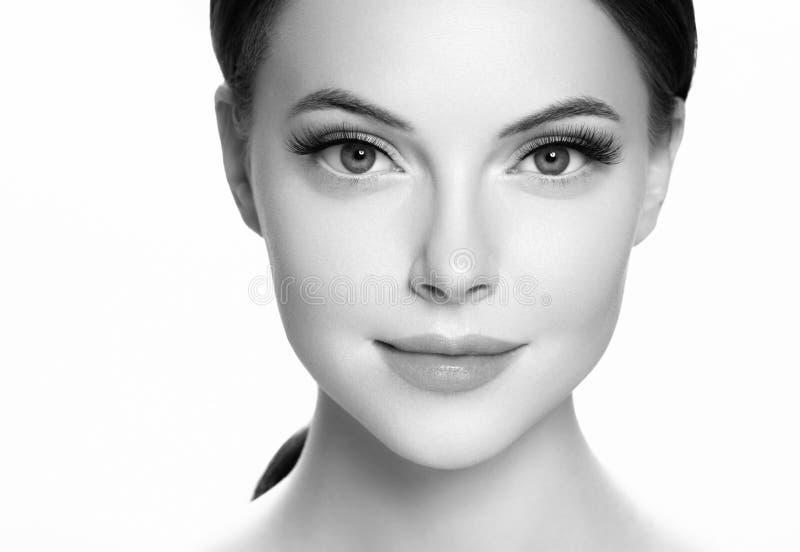 Os chicotes do olho, mulher da extensão do chicote chicoteiam o fim acima de monocromático macro foto de stock royalty free
