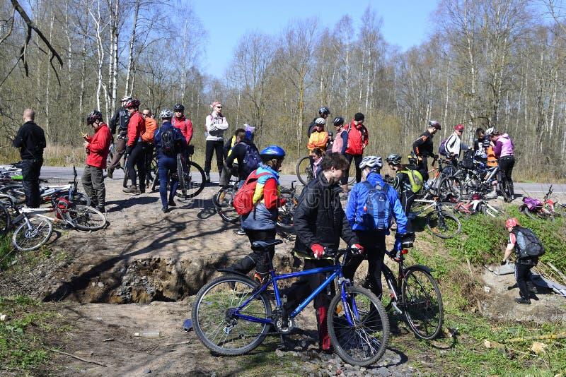 Os ciclistas relaxam biking ao ar livre fotos de stock royalty free