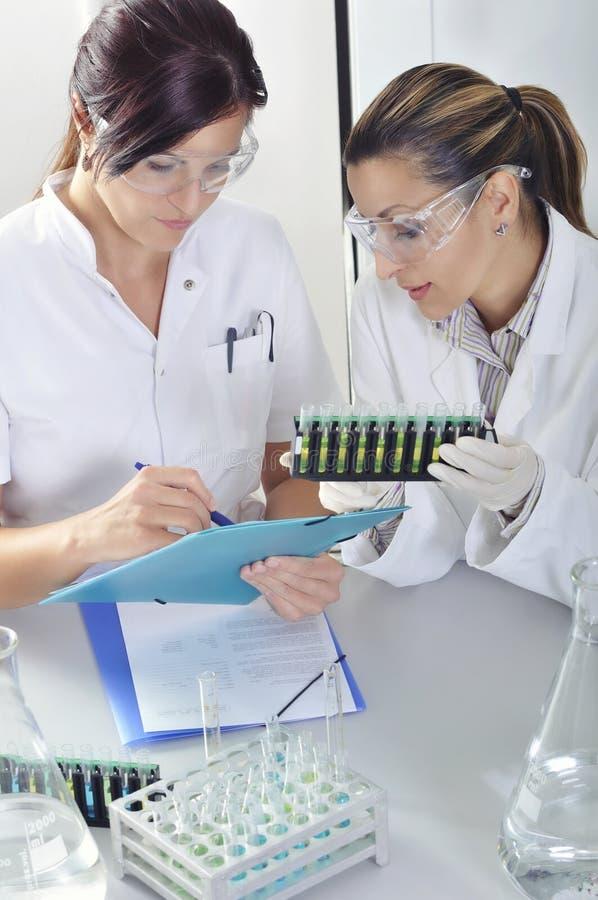 Os cientistas novos atrativos dos alunos de doutorado que observam a cor deslocam após o destillation da solução no laboratório q imagens de stock