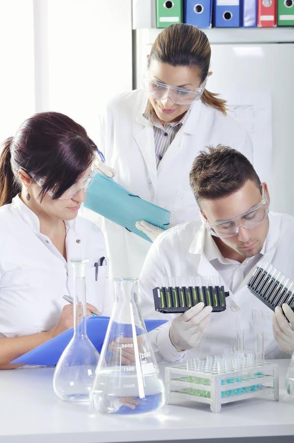Os cientistas novos atrativos dos alunos de doutorado que observam a cor deslocam após o destillation da solução no laboratório q imagem de stock royalty free