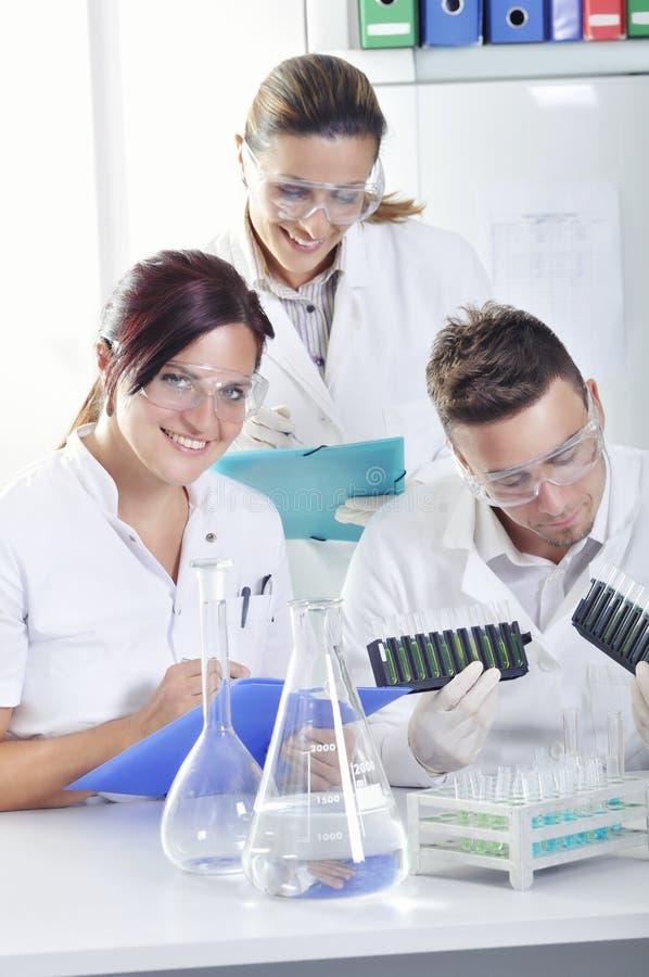 Os cientistas novos atrativos dos alunos de doutorado que observam a cor deslocam após o destillation da solução no laboratório q fotos de stock