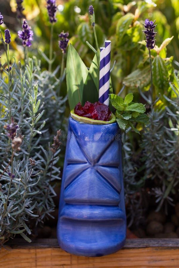 Os cocktail tropicais serviram em um vidro do estilo do tiki no verde fotos de stock royalty free