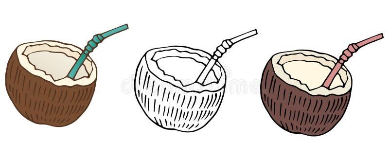 Os cocos dos desenhos animados colorem a arte do alimento da tração da mão da natureza do grupo do café ilustração royalty free